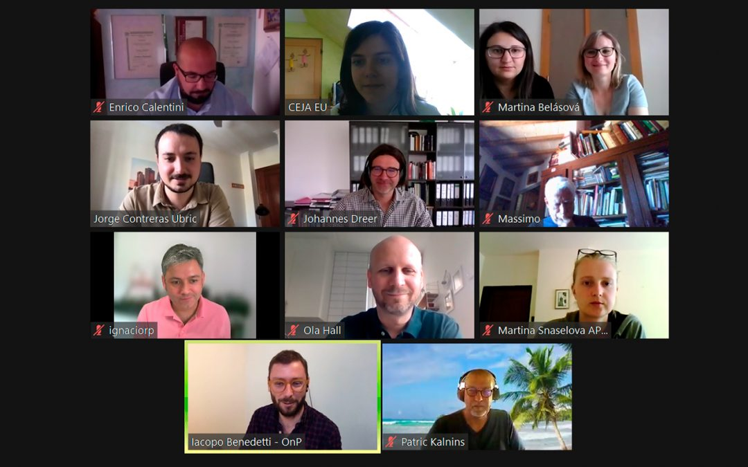 Zoom consortium meeting on 26 May 2021